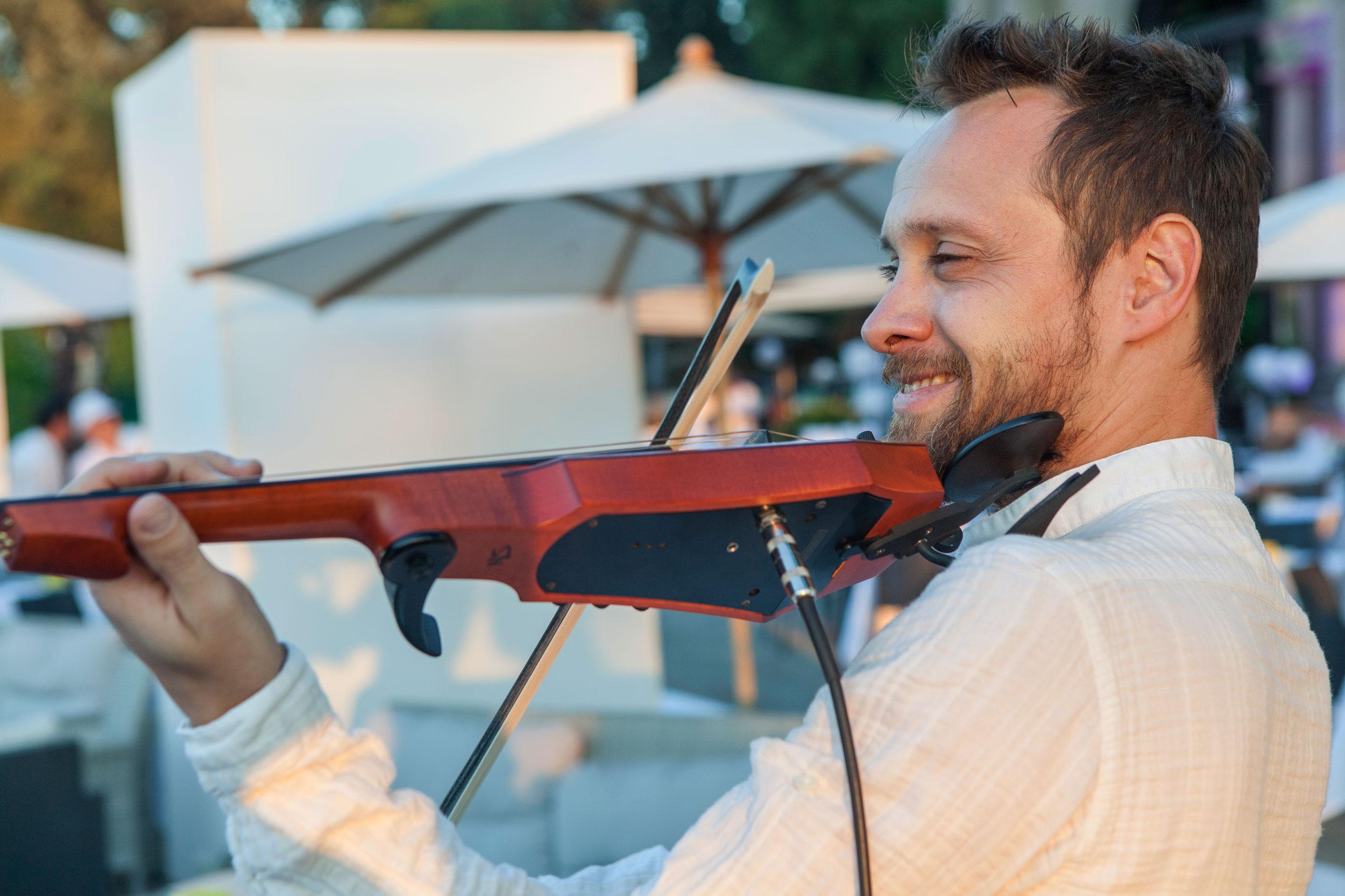 violino-immagine-estiva